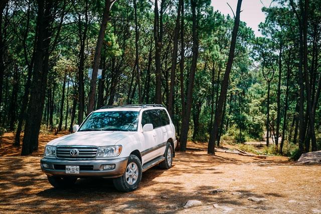 Biele auto zaparkované na lesnej ceste medzi stromami