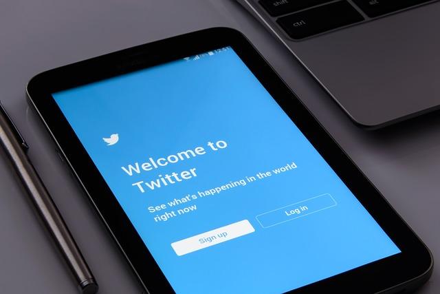 Sociálna sieť Twitter.jpg