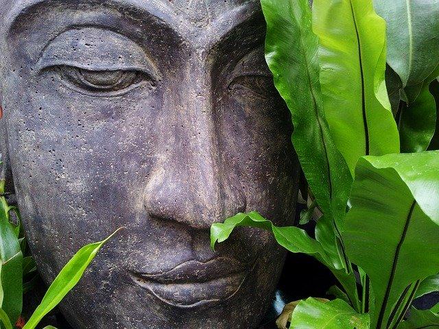 Socha Budhu obklopená zeleným lístím